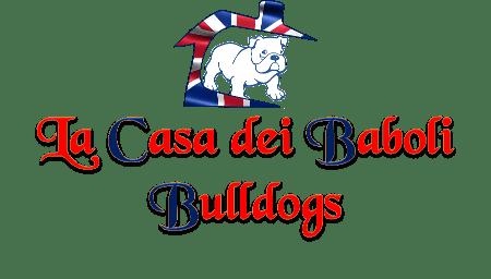 Logo La Casa Dei Baboli